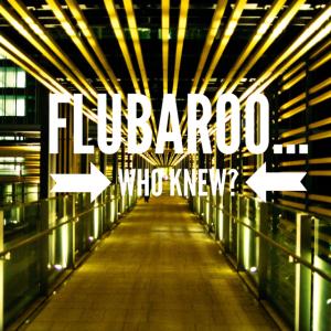 Flubaroo… Who knew?